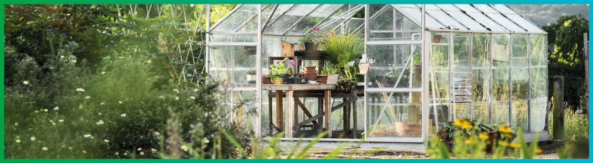 Cleaners ideal for maintaining your growing environments and greenhouses